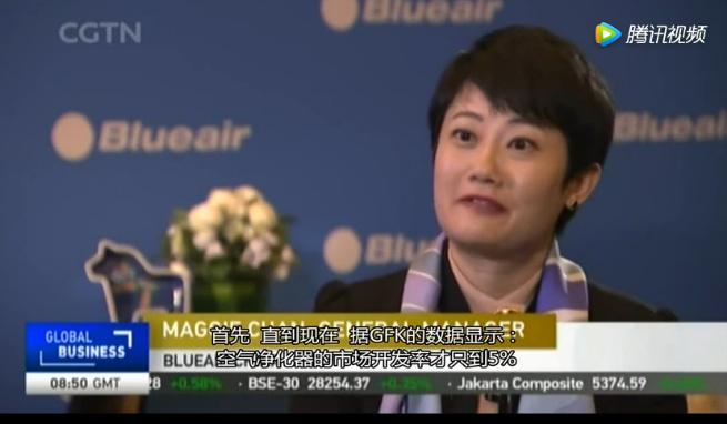 CGTN外语频道专访联合利华旗下 Blueair中国区总经理陈冰女士