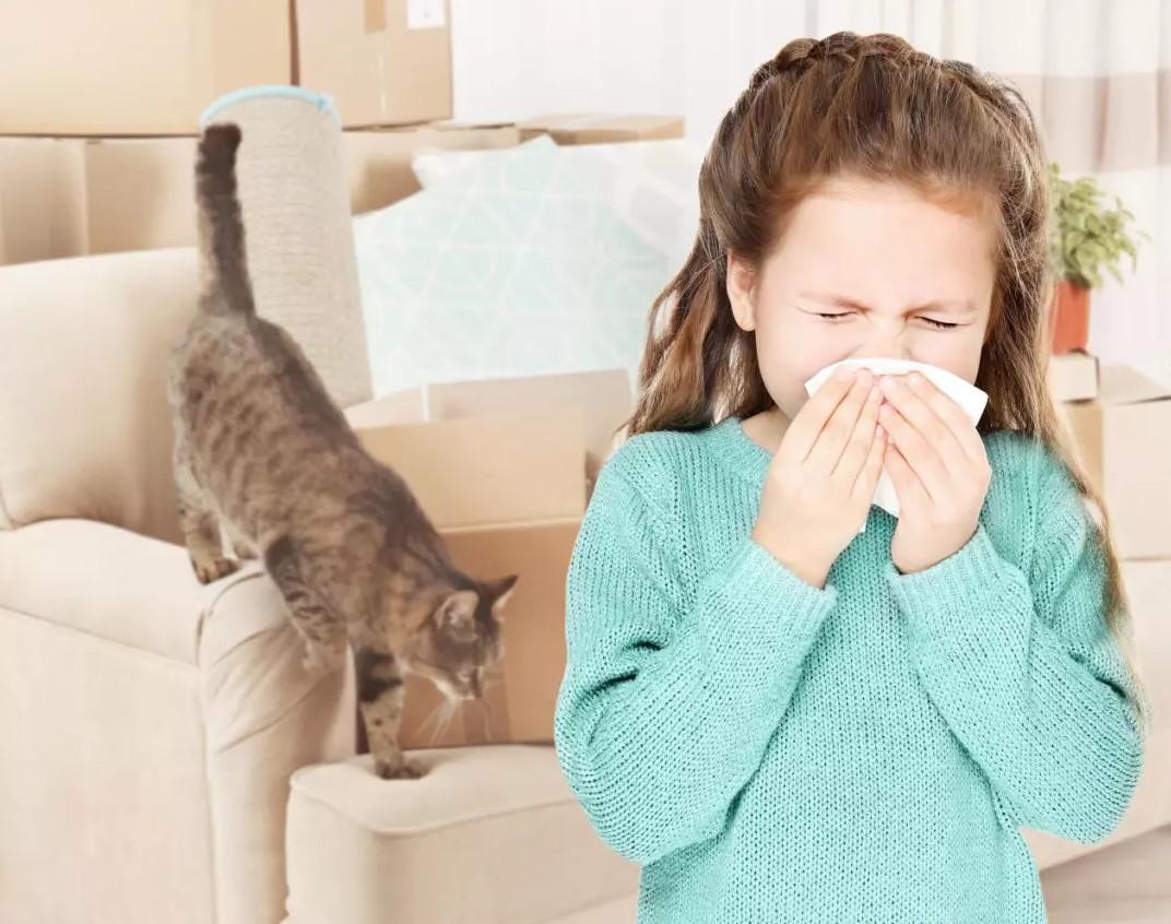 呼吸道疾病冬季爆发,选择对的净化器为冬季护航